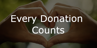every donation counts